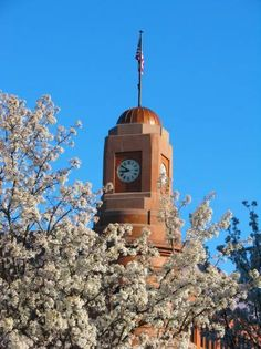 Bank tower in Spring, Traverse City, MI