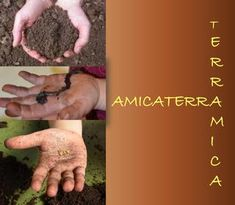 "Cover of ""Amicaterra"" Reggio Children, Green School, Earth Day, Make It Simple, Education, Terra, School Ideas, Magazines, Platform"