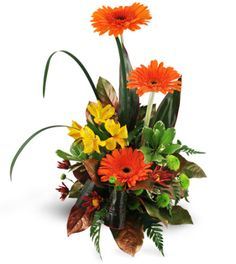 Say thanks or congratulations to the standout in your crowd with this exciting display. Three beautiful orange gerbera daisies take center stage among yellow alstroemeria, crysanthemums and a beautiful selection of greenery. It's the perfect way to recognize a job well done!  Bright orange gerbera daisies, alstroemeria, button spray chrysanthemums, and a variety of tropical greens make up these cheerful arrangement.