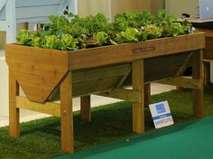 'Vegtrug' brings raised beds to new heights.  I want something like this for my fancy lettuce.