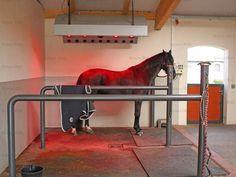 Röwer & Rüb equine barns - solarium stall