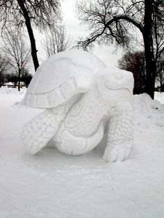 Tortoise snow sculpture from Debbie Hampson Snow Sculptures, Sculpture Art, Winter Fun, Winter Snow, Funny Snowman, Frozen, Ice Art, Snow Art, Winter Festival
