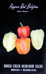 Red Belgian