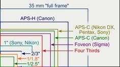 Full frame cameras or crop sensor cameras.  Which works best for you?