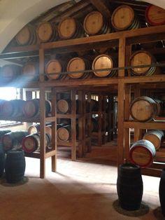 Avignonesi Winery in Montepulciano, Toscana