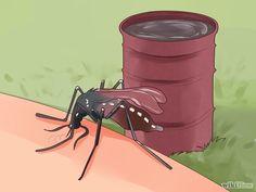 Imagem intitulada Protect Against Chikungunya Virus Step 2