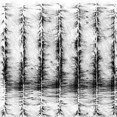 Leonardo Solaas - Generative Drawing    http://www.flickr.com/photos/solaas/