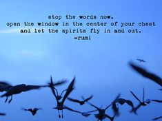 """Stop the words now. Open the window in the centre of your chest, and let the spirits fly in and out."" ~ Rumi ~"
