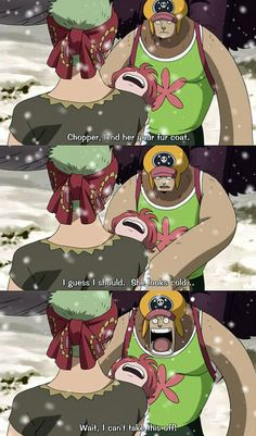 Zoro... You idiot...