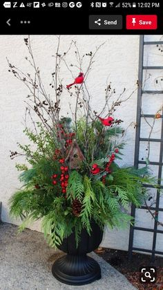 Outdoor Christmas Planters, Christmas Urns, Christmas Front Doors, Outdoor Christmas Decorations, Christmas Wreaths, Outdoor Planters, Winter Christmas, Thanksgiving Holiday, Porch Christmas Lights
