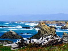 Taken from our last trip to Mendocino in 2011 - looking forward to seeing the coast this weekend!! Starting today!!