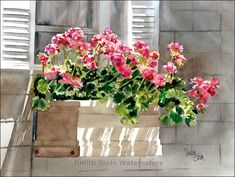 Selections from the portfolio of Judith Stein watercolors featuring flowers and plants.