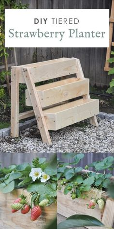 Strawberry Planters Diy, Strawberry Box, Strawberry Garden, Strawberry Hydrangea, Strawberry Plants, Diy Planters Outdoor, Outdoor Gardens, Planter Ideas, Outdoor Wood Table