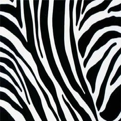 Gekkofix Yapışkanlı Folyo - Zebra -> Gekkofix