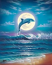 hawaii seascapes, seascape paintings, seascapes,dolphin paintings,hawaii…