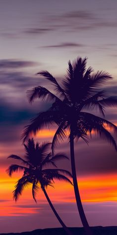 Palm trees purple sunset by fred bahurlet (wamdesign Palm Trees Purple Sunset – Photography Sunset Wallpaper, Iphone Background Wallpaper, Landscape Wallpaper, Tumblr Wallpaper, Landscape Background, Wallpaper Quotes, Cloud Wallpaper, Cool Backgrounds For Iphone, Blog Backgrounds