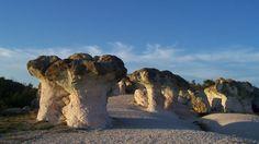 Феноменът Каменните гъби - романтика и очарование на едно място