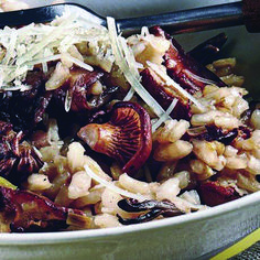 15 Must-Try mushroom risotto healthy one and only salonfood.com Sauteed Mushrooms, Wild Mushrooms, Wild Mushroom Risotto Recipe, Large Mushroom, Vegetarian Main Dishes, Risotto Recipes, Gordon Ramsay, Dinner Tonight, Real Food Recipes