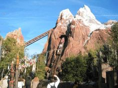 #TRAVEL: I want to go to Walt Disney World and ride many rides but I really want to go on the Expedition Everest Roller Coaster  -We cover the world over 220 countries, 26 languages and 120 currencies hotel and flight deals.guarantee the best price multicityworldtravel.com