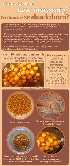 Boost immunity system naturally! Use an ancient plant with over 190 nutrients, mix it with honey and forget about colds and flue. And this is not enough. There are so many conditions solved with this plant. See here more info. http://healthywithhoney.com/seabuckthorn-and-honey-or-how-to-boost-immune-system-naturally/ #immunityboost  #seabuckthorn #health