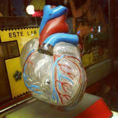 Belo coração sintético feito p/ médicos e alunos de #medicina. Vem c/ base (R$ 120). Loja fica aberta até às 19h. (at Caos)