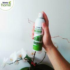 Дом — место, где нам всегда спокойно и тепло. Важная составляющая домашнего уюта — это аромат. Он влияет на внутреннее состояние души, настроение и даже на здоровье.  Как купить  продукцию AMWAY дешевле :  http://elenafedulina.com/page59886  Создать уют в доме можно с помощью AMWAY™ GREEN MEADOWS™ Концентрированный освежитель воздуха «Зелёные луга»!  Одно нажатие на пульверизатор, и ваш дом наполнится тонкими ароматами запаха свежести.  #AmwayHome #свежесть #освежительвоздуха #GREENMEADOWS…