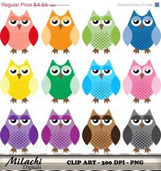80% OFF SALE Cute Owl clipart digital clip art by MilachiDigitals