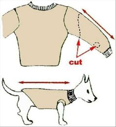 Recycle an old sweater or sweatshirt into a new one for your LITTLE doggie or cat, to help keep them warm! Using the sleeve area, you can get two doggie sweaters out of one people sweater! :0)
