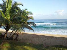 Perfect Puerto Rico