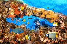 Great Barrier Reef, Australia - Jeff Hunter/Getty Images