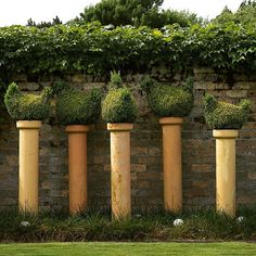 Could there be anything better than topiary chooks in terracotta pipes? Ann and Graeme Sutton's garden in the Waikato, New Zealand