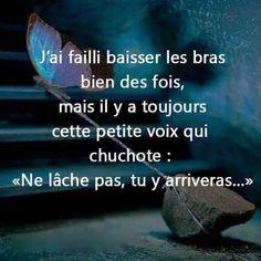 """J'ai failli baisser les bras bien des fois, mais il y a toujours cette petite voix qui chuchote : """"Ne lâche pas, tu y arriveras..."""" #citation #citationdujour #proverbe #quote #frenchquote #pensées #phrases #french #français"""