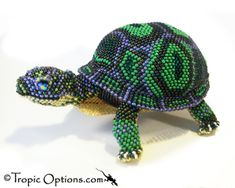 Land Turtle - Giant - Assorted