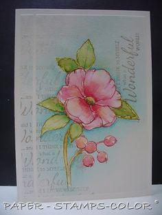 Magenta: I need spring with all it's beauty... J'ai besoin du printemps avec toutes ses beautés
