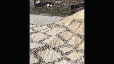 Rug Cleaning and Restoration Process in Palm Beach Oriental Rug Cleaning, Rug Cleaning Services, Restoration Services, Cleaning Business, South Florida, Palm Beach, Rugs, Farmhouse Rugs, Rug