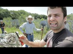 """""""The Agave Fields"""" #Episode3"""