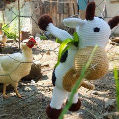 on holiday 😅 #amigurumi #cow