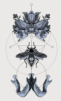 Panoply ( 2013 Version) by Hannes Hummel, via Behance