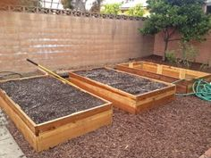 Raised beds in vegetable garden. Learn how to transform a weedy mess into a thriving kitchen garden.
