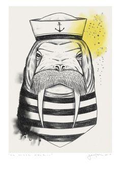 """El Señor Walrus"" walrus illustration. © Daniela Garreton 2014"