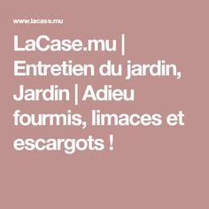LaCase.mu | Entretien du jardin, Jardin | Adieu fourmis, limaces et escargots !
