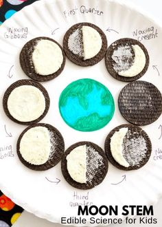 Oreo Moon Phases Activity Let's enjoy a bit of edible astronomy with this Oreo moon phases activity project. Have you ever noticed the changing shape of the moon! Let's explore how the moon's shape or moon phases change over the course of the month with a Science Classroom, Teaching Science, Science For Kids, Teaching Kids, Kids Learning, Science Fun, Forensic Science, Elementary Science, Classroom Decor