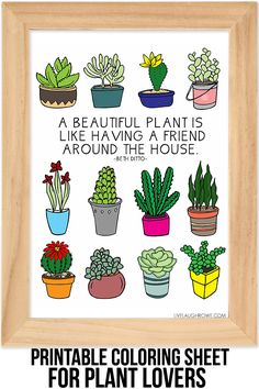 Coloring-Sheet-for-Plant-Lovers.-Free-Succulent-Coloring-Sheet.jpg (600×900)