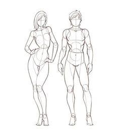 Resultado de imagem para proporção do corpo humano