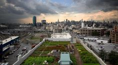 Zöld kerületet építenek a római külvárosban smile emoticon http://buff.ly/1HBUQmg