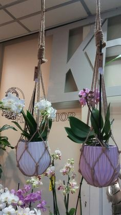 Orchidee in pot met macramé