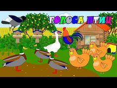 Учим голоса птиц. Развивающие мультики для детей