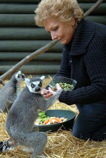 """""""O Grito do Bicho"""": ONG de animais exóticos em perigo na Inglaterra"""