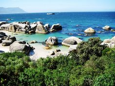 Visit Cape of Good Hope