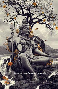 Duas pessoas têm vivido em você por toda a sua vida. Uma é o ego, tagarela, exigente, histérico, calculista; a outra é o ser espiritual escondido, cuja silenciosa voz de sabedoria você somente ouviu ou reparou raramente - você revela em si mesmo o seu próprio guia sábio.    Sogyal Rinpoche